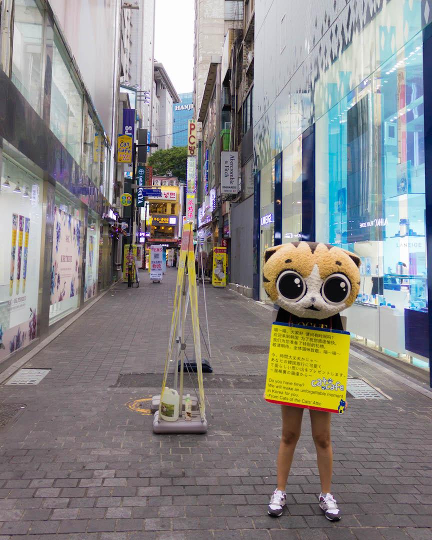 A women advertises a cat cafe in Dongdaemun - Seoul, South Korea