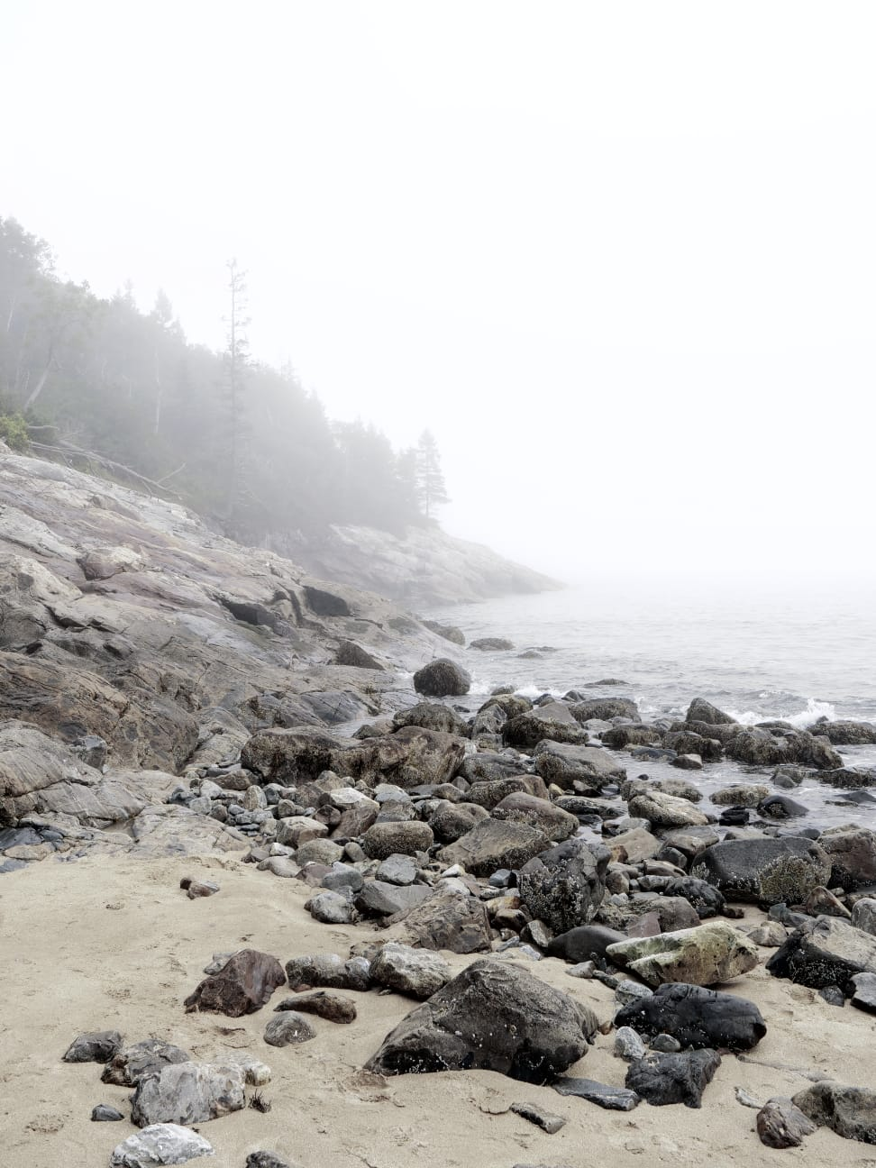 Sand Beach, Maine. Photo by: Sarah Funk
