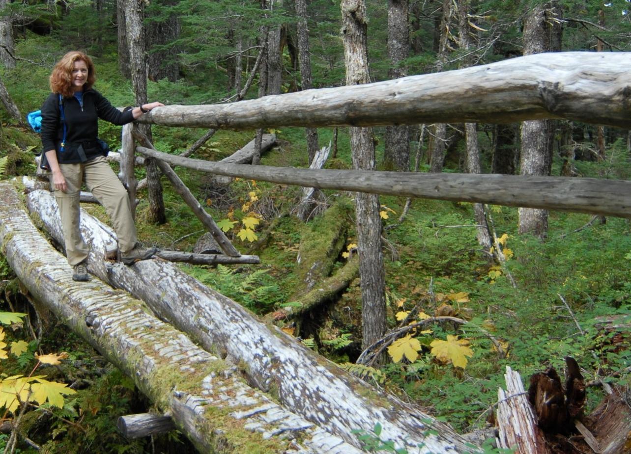 Caines Head Kayak & Hike