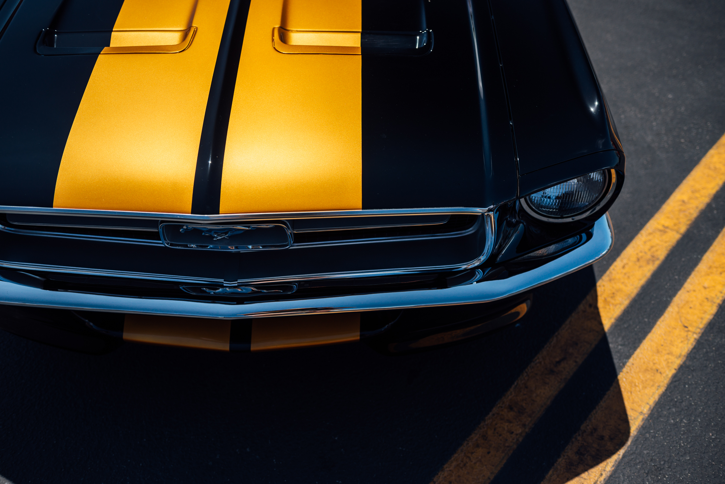 AED_CarShow-10.jpg
