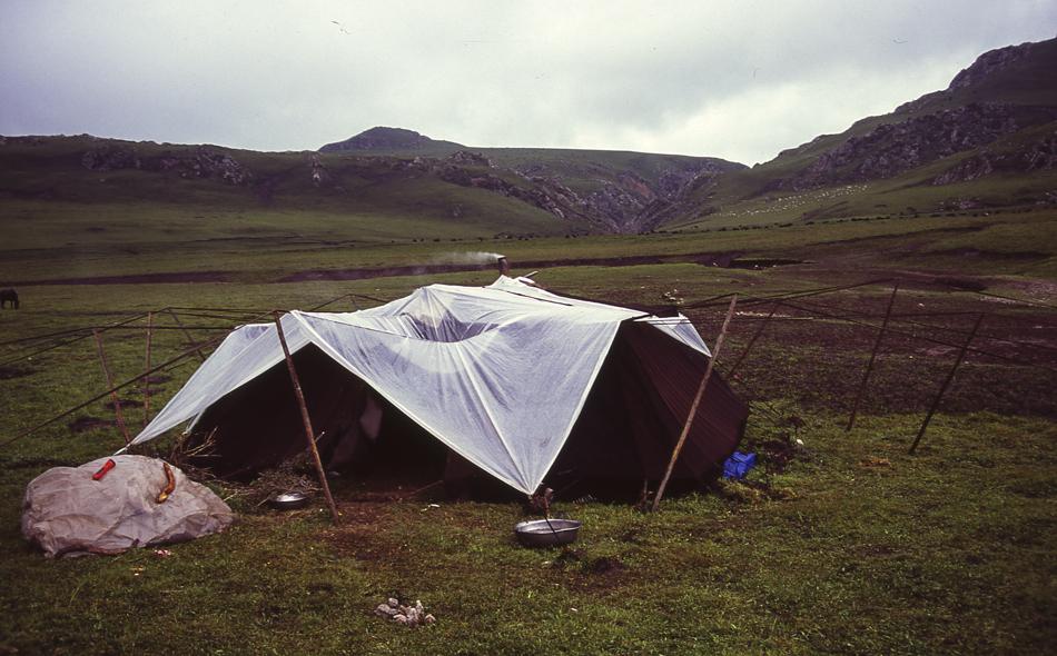 nomads-4.jpg