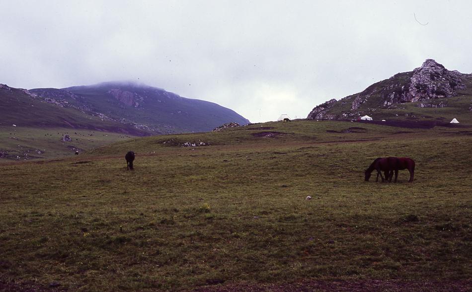 nomads-13.jpg