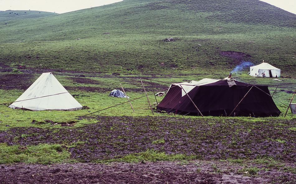 nomads-14.jpg