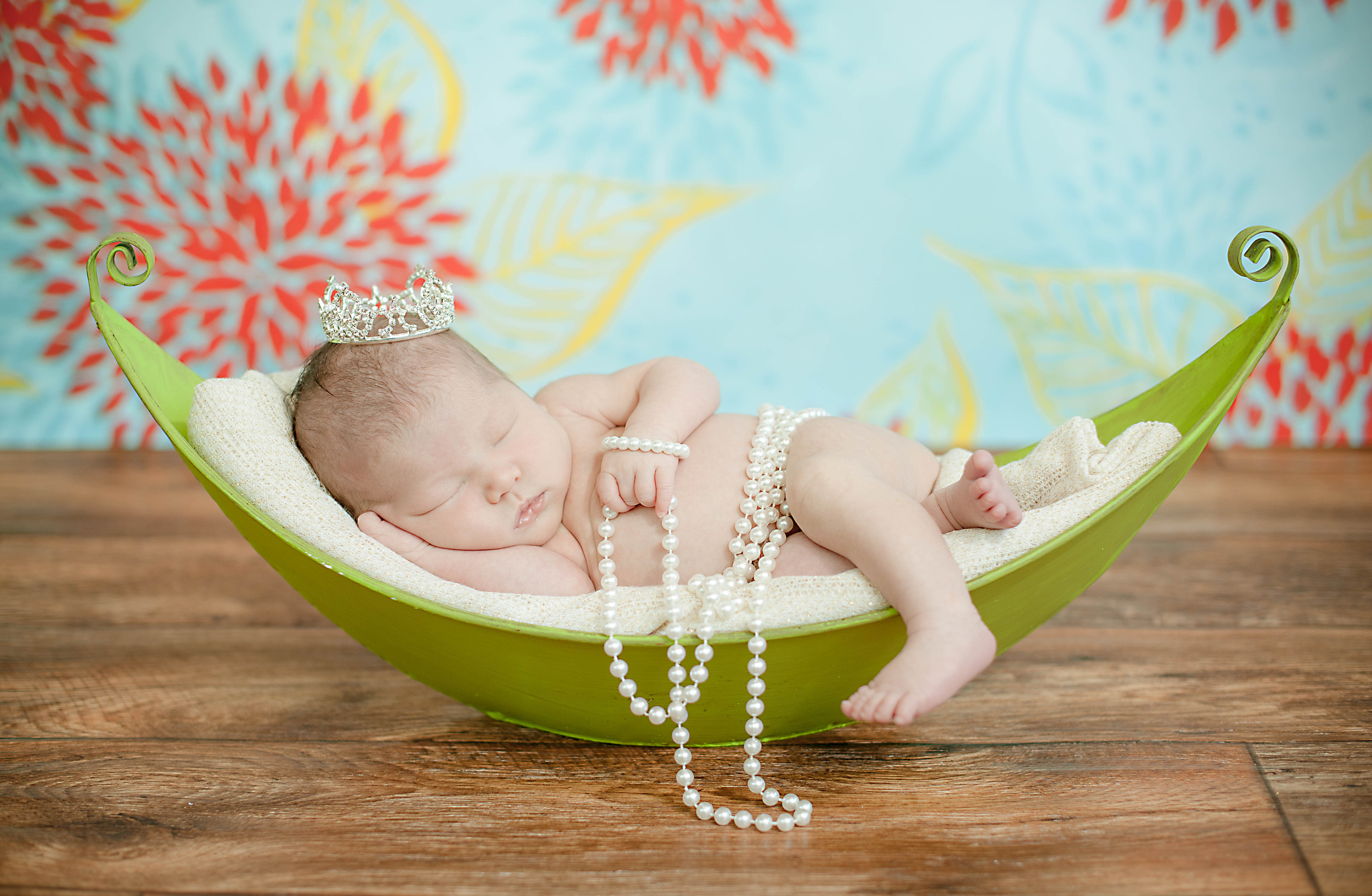 Colorful Newborn Photography Metro Detroit Michigan Photos by Miss Ann.jpg