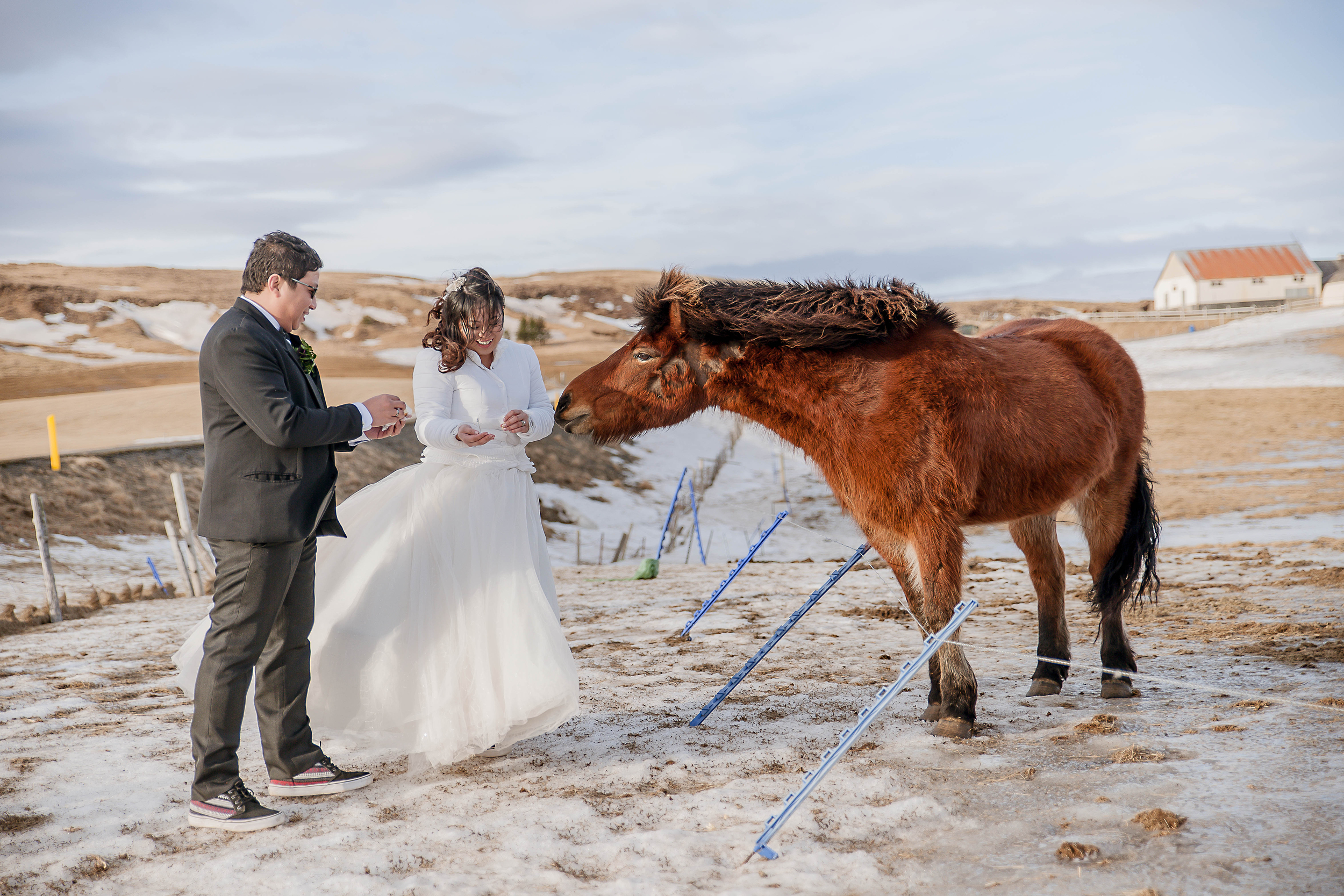 Iceland Winter Wedding Photos by Miss Ann-54.jpg