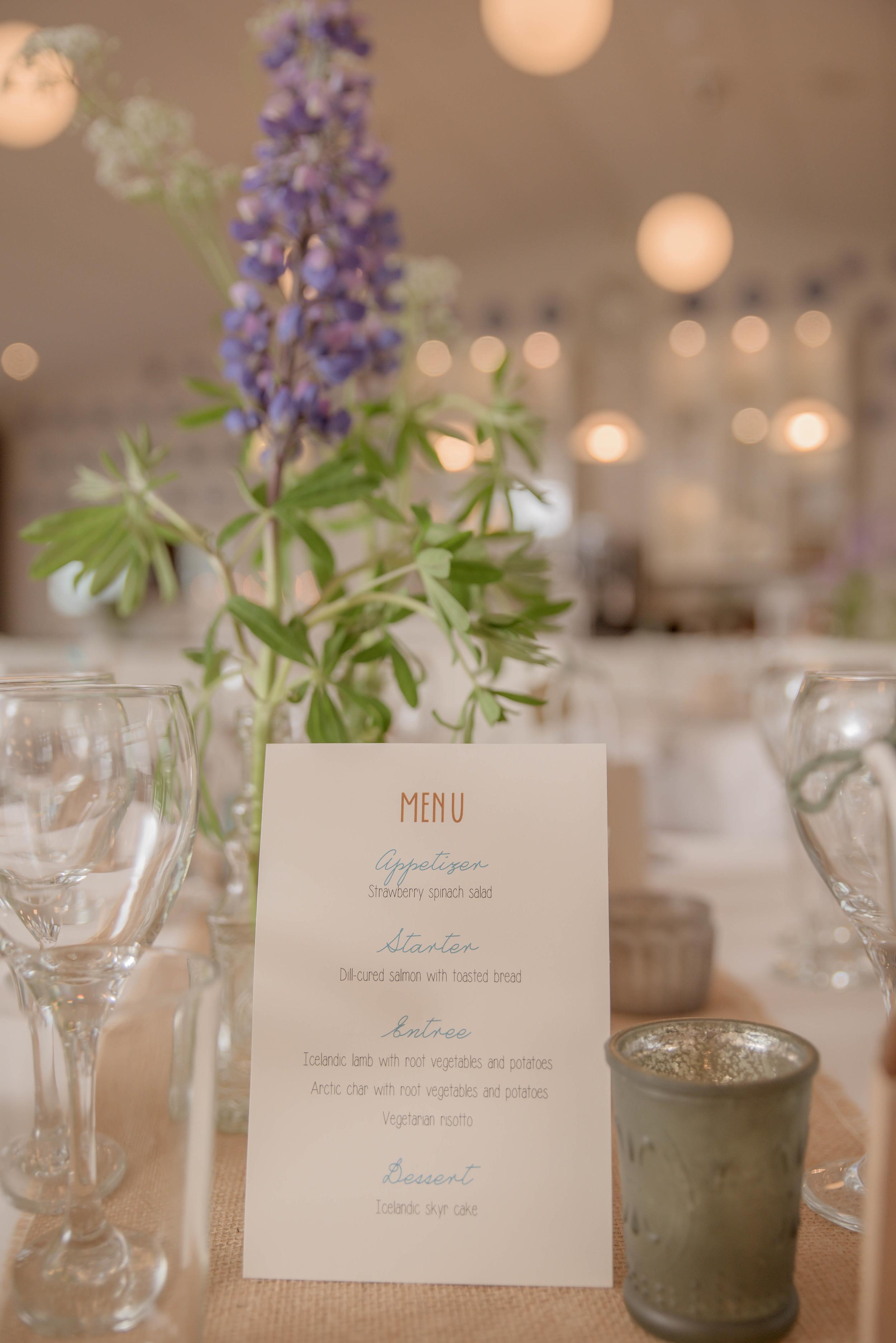 Iceland Wedding Reception Photographer-2.jpg