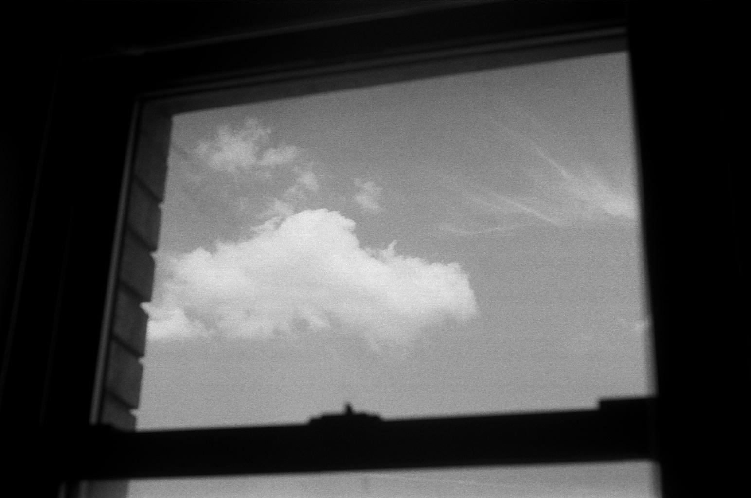 Window, Bushwick, July 2013