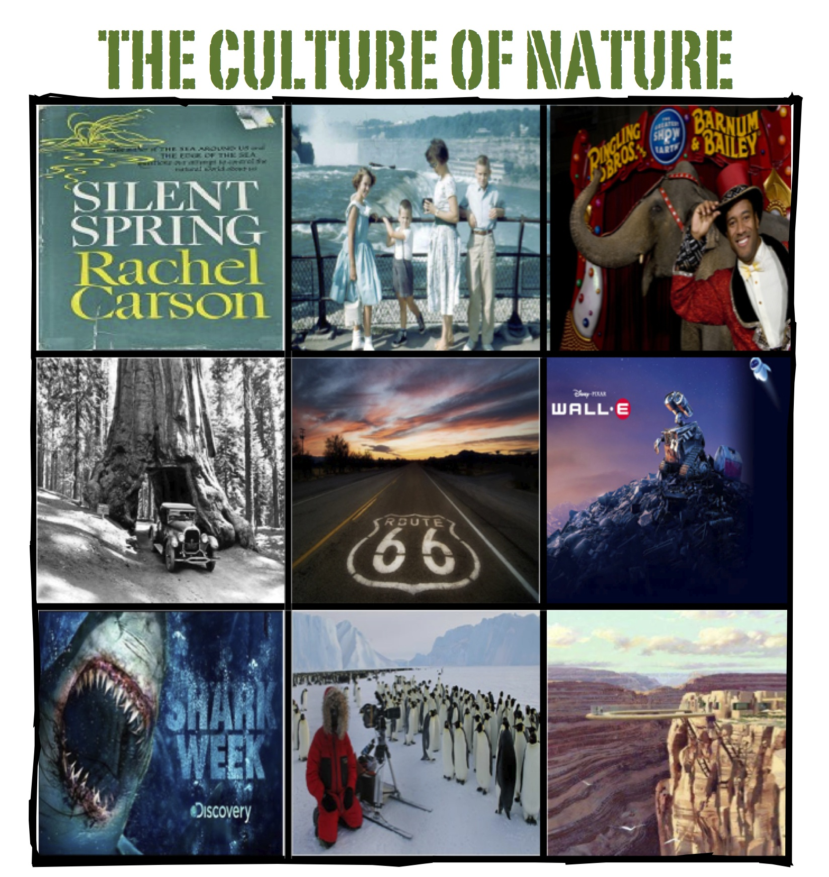 The Culture of Nature Flyer Image.jpg