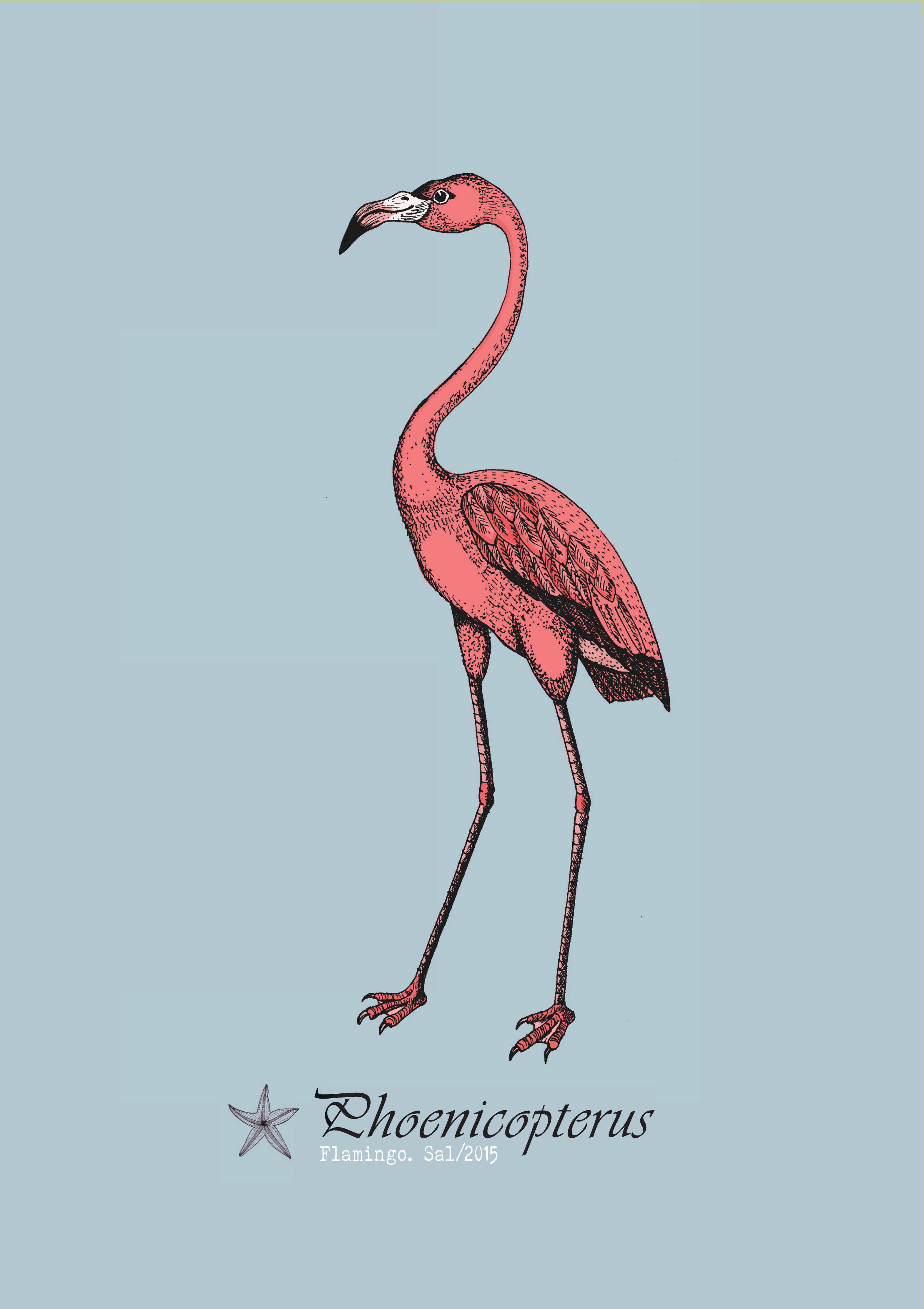 A4 picture frame flamingo.jpg