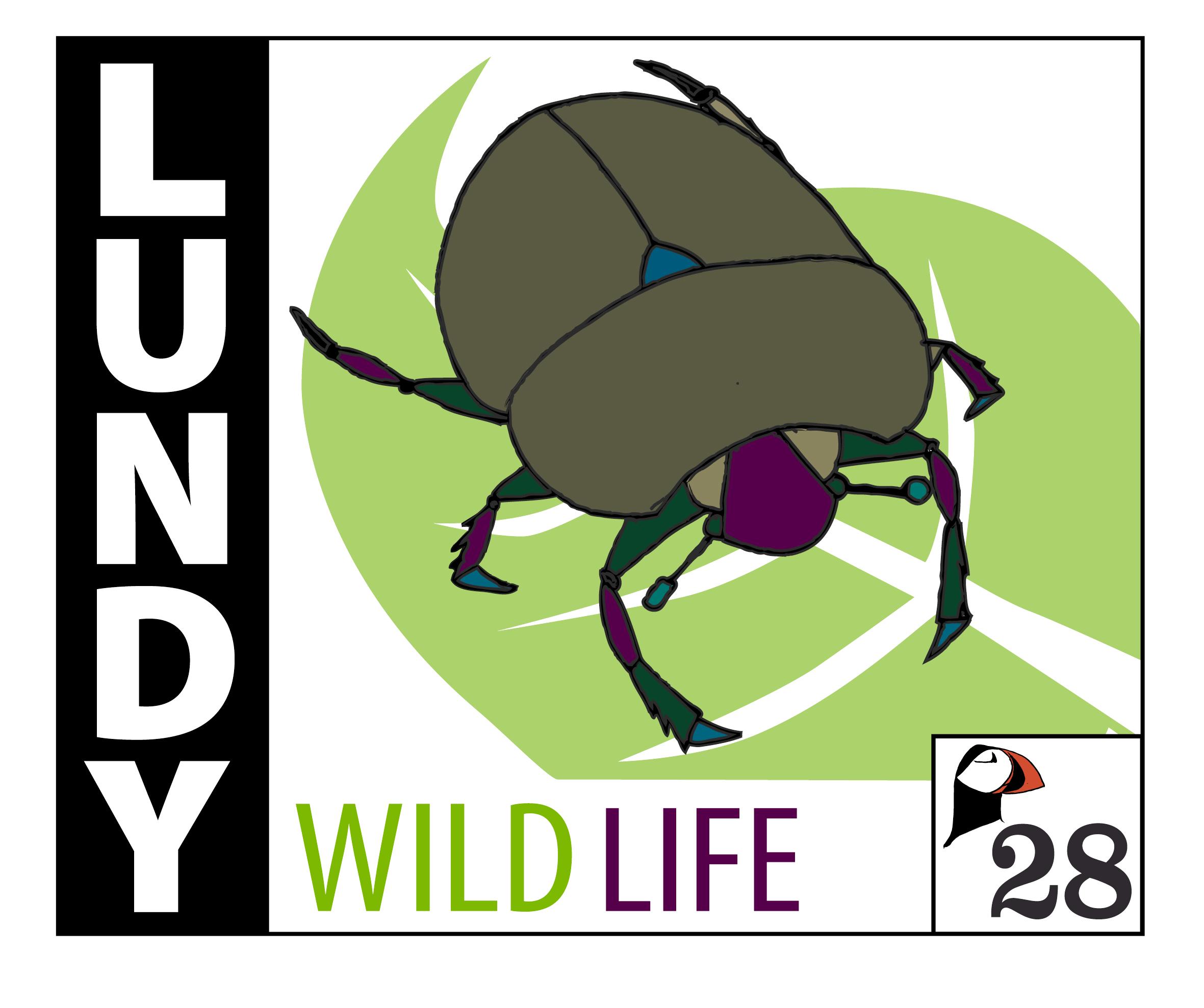 LUNDYSTAMP_beetle-WEB.png