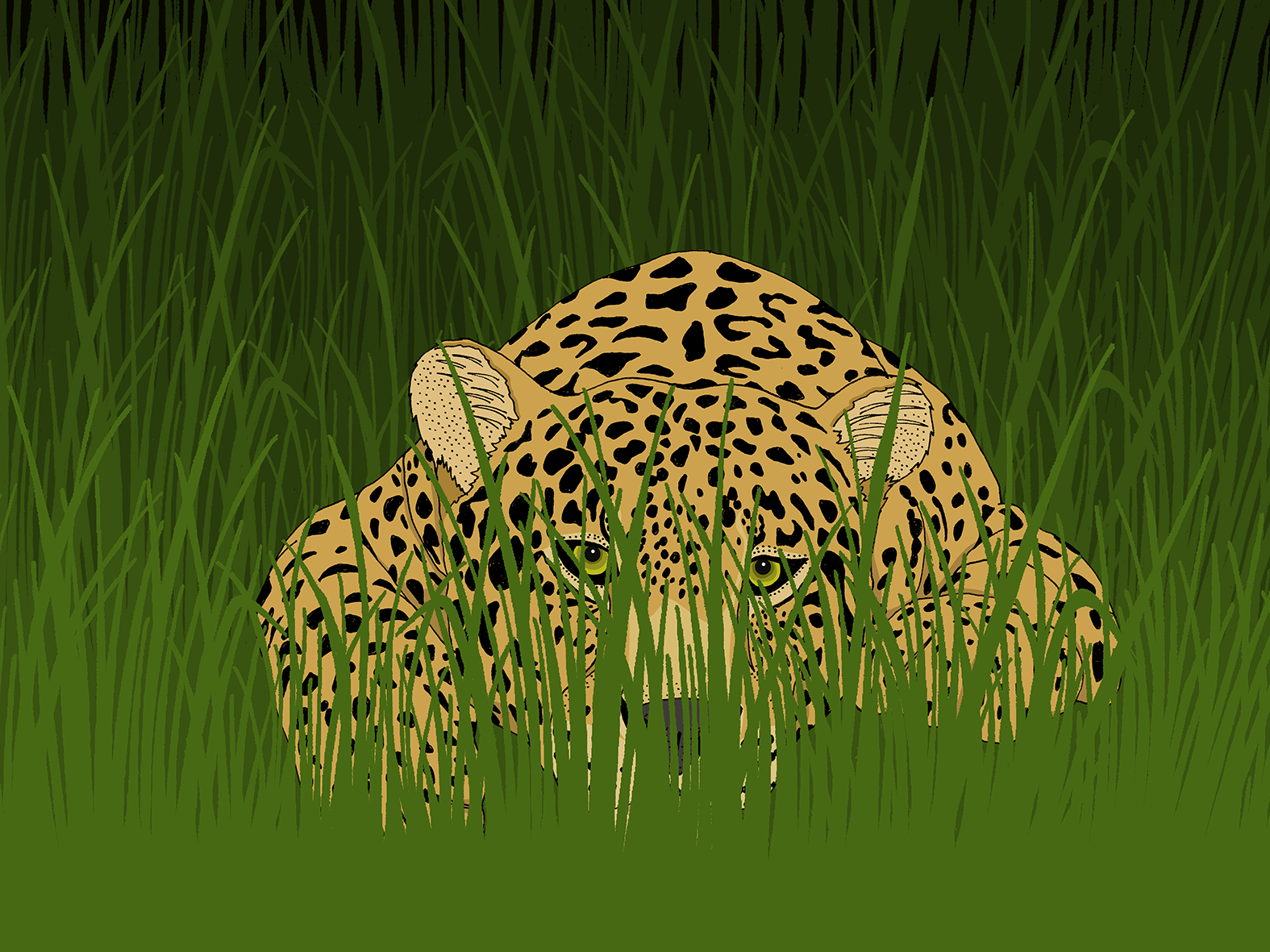 Leopard in the grass-small.png