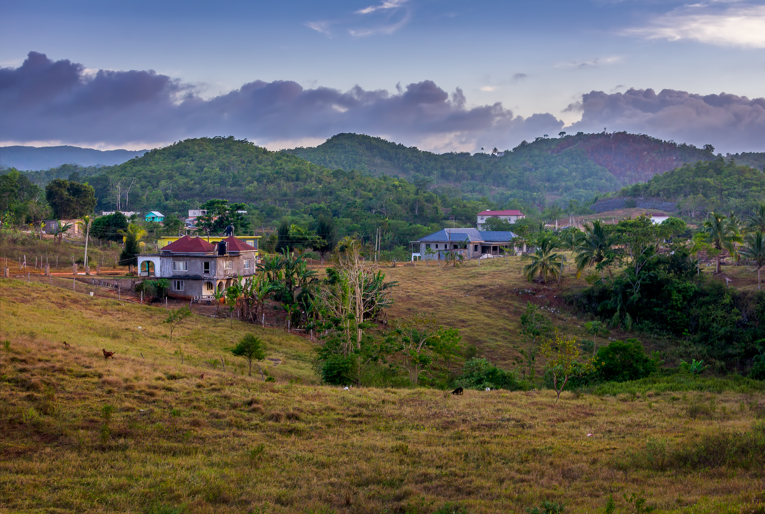 A lovely evening in Steerfield, St Ann, Jamaica