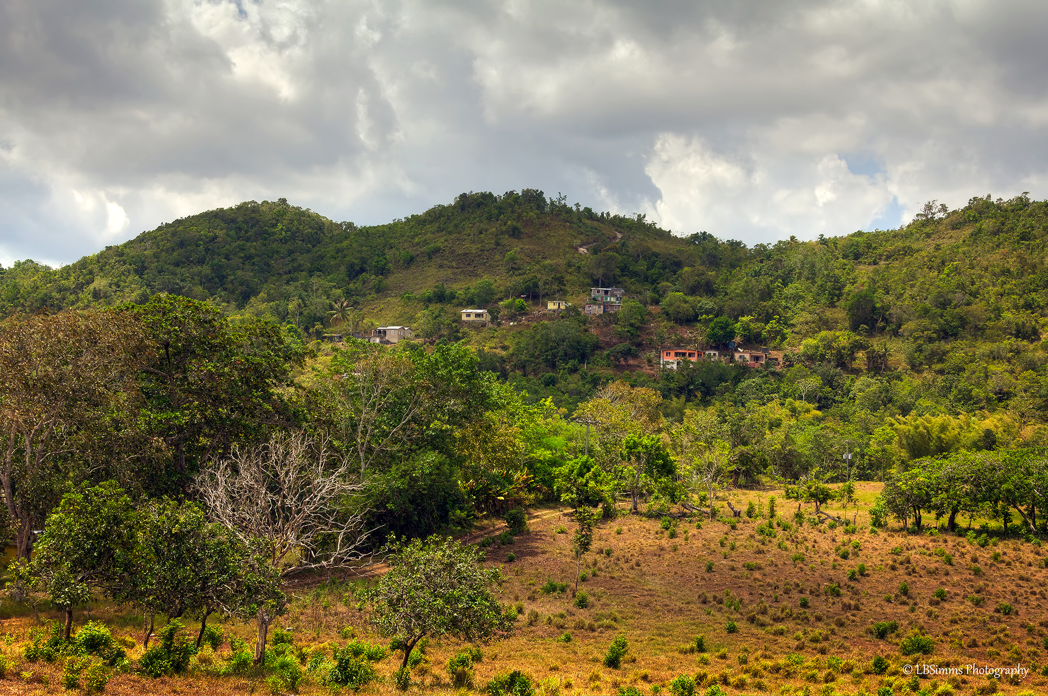 Beautiful country side of Walkerwoods in St Ann, Jamaica.