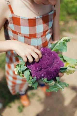 Bobo_Choses_SS19_make-a-garden-vichy-playsuit_large.jpg