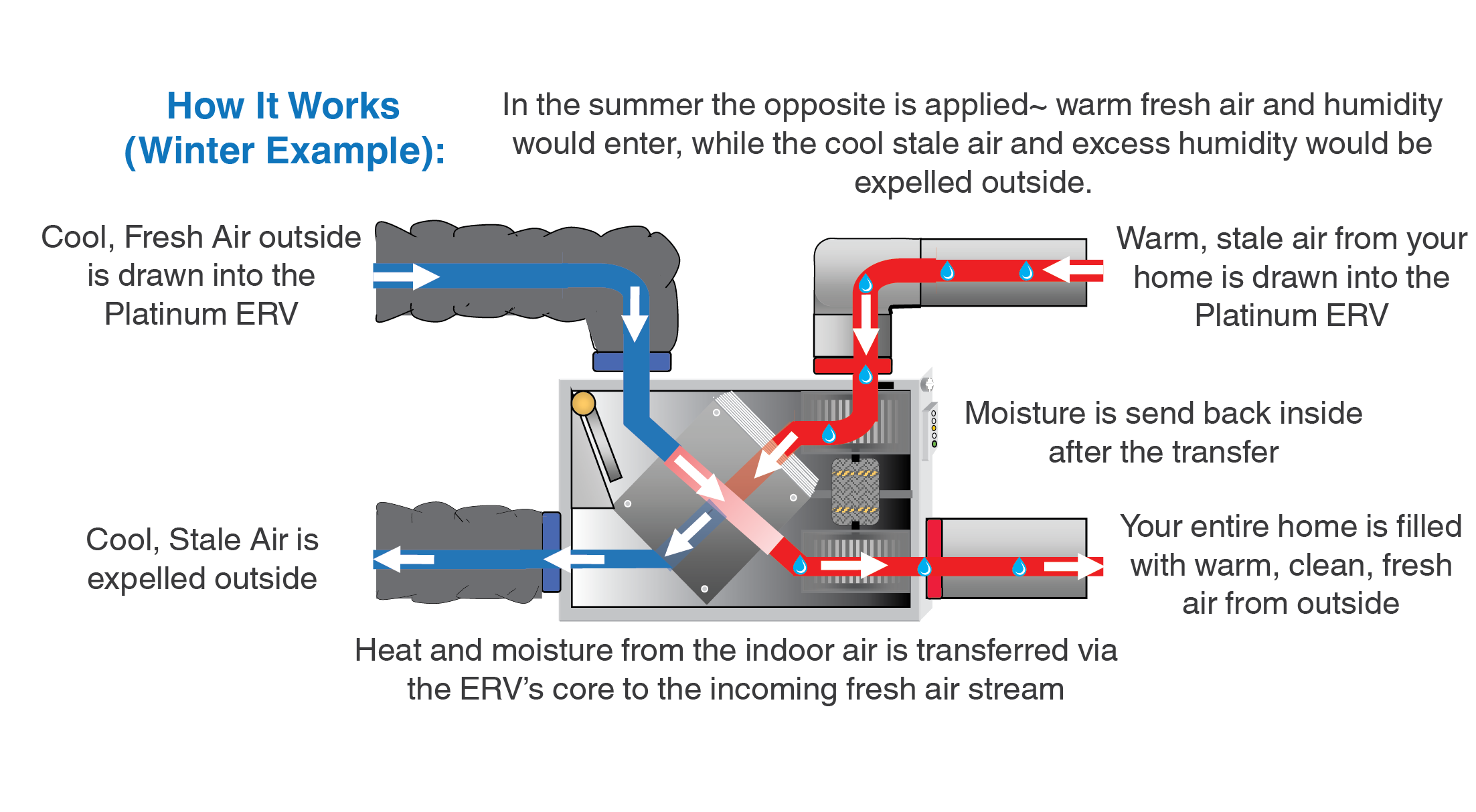 How ERV Works (Winter Example).png