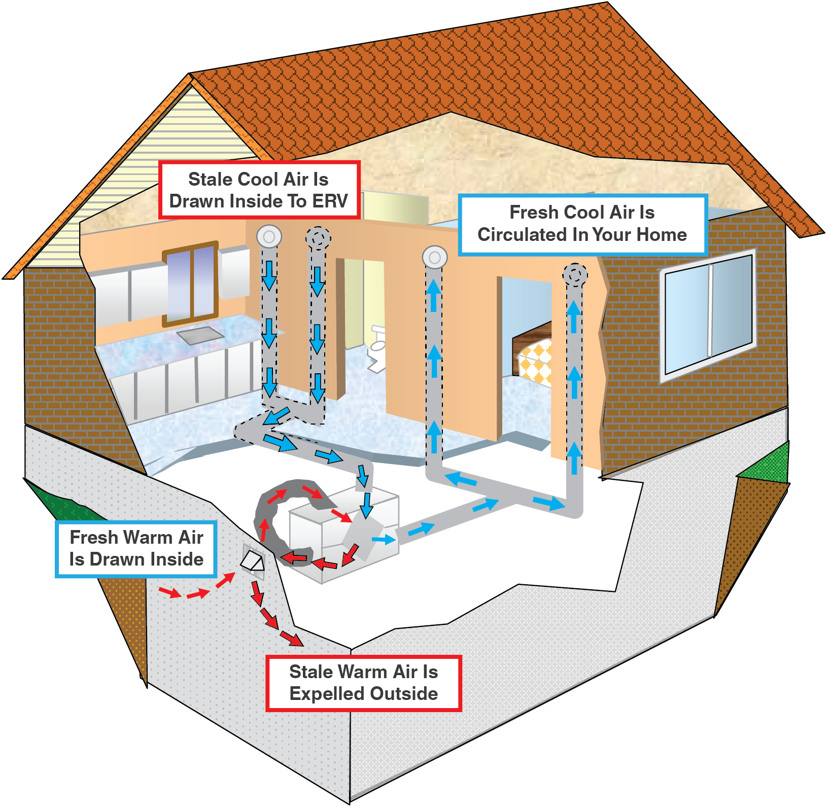 How ERV Works (House Illustration).png