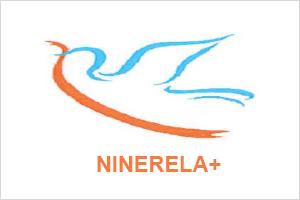 ninerela.png