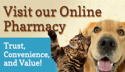 Click on the icon to visit our pharmacy