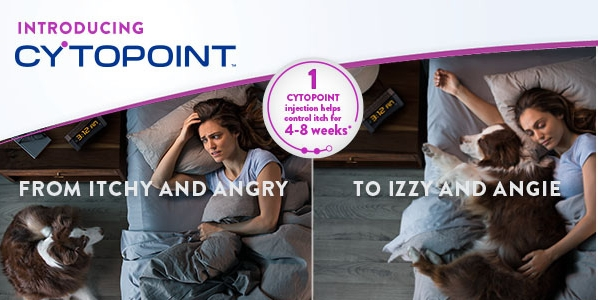 Cytopoint image.jpg