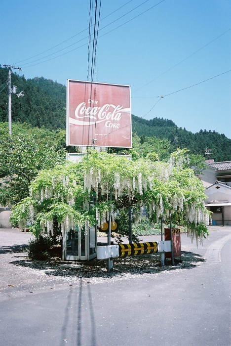 Purple Travel Magazine / Matsuyama, Japan