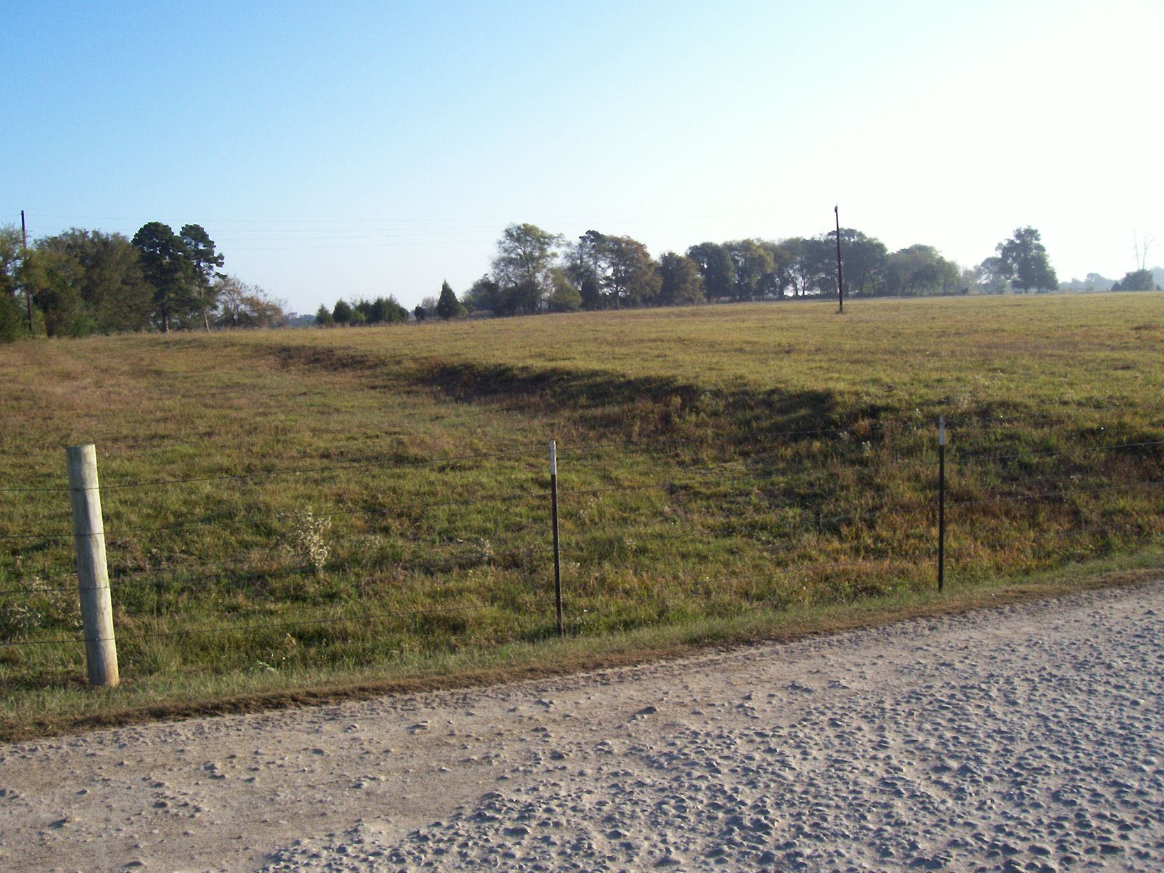 Ruts in Pastures Beat the Odds