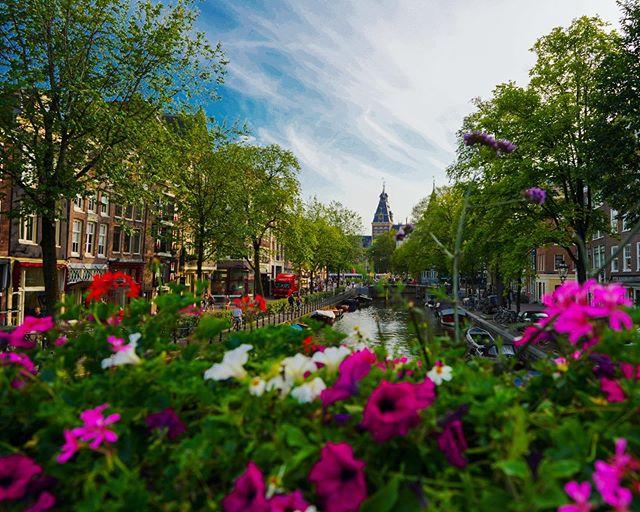 🇳🇱 Spiegelgracht —- #amsterdam #netherlands #travelphotography #sonyalpha #lonelyplanet #travel #rijksmuseum