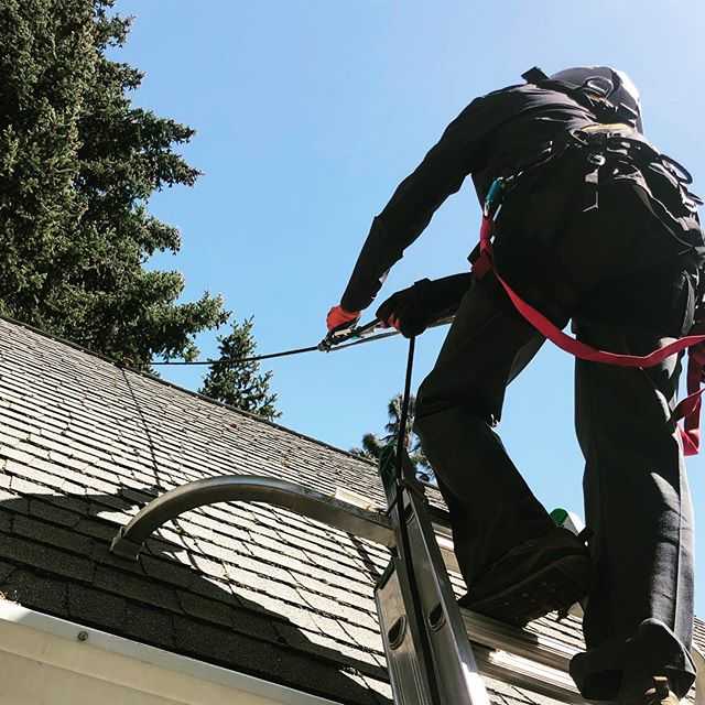 We are doing a little roof cleaning today. Most roofs we can clean from the ground or from the gutter edge using a ladder, but today's house has architectural elements that require us to treat some areas from the roof. For safety while working, Ryan has an ascender for a little mechanical advantage while climbing the roof and a prusik for backup fall protection.