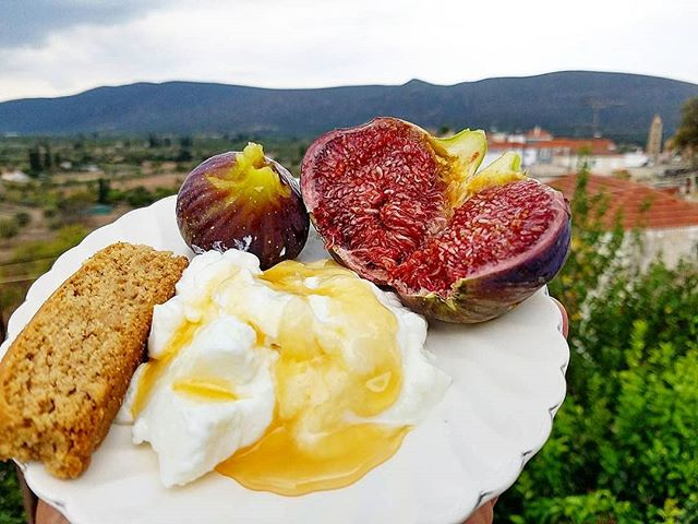 A nice light breakfast! Homemade yogurt with Greek honey, fresh picked figs off the tree and fresh baked orange paximadi (like a Italian biscotti)! . . #kouzini #lakonia #greece #fresh #greek #mediterranean #homemade #honey #yogurt #love #flavor #home #chef #foodie #instapic #instafood #niata #natural #fig #protein #potd #travel #bodybuilding #health #organic #inspire #fit #fitness #healthy #biscotti . . To your health  Kouzini  www.kouzini.com