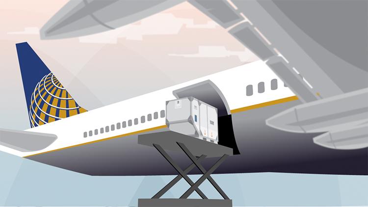 cargo_f6.jpg