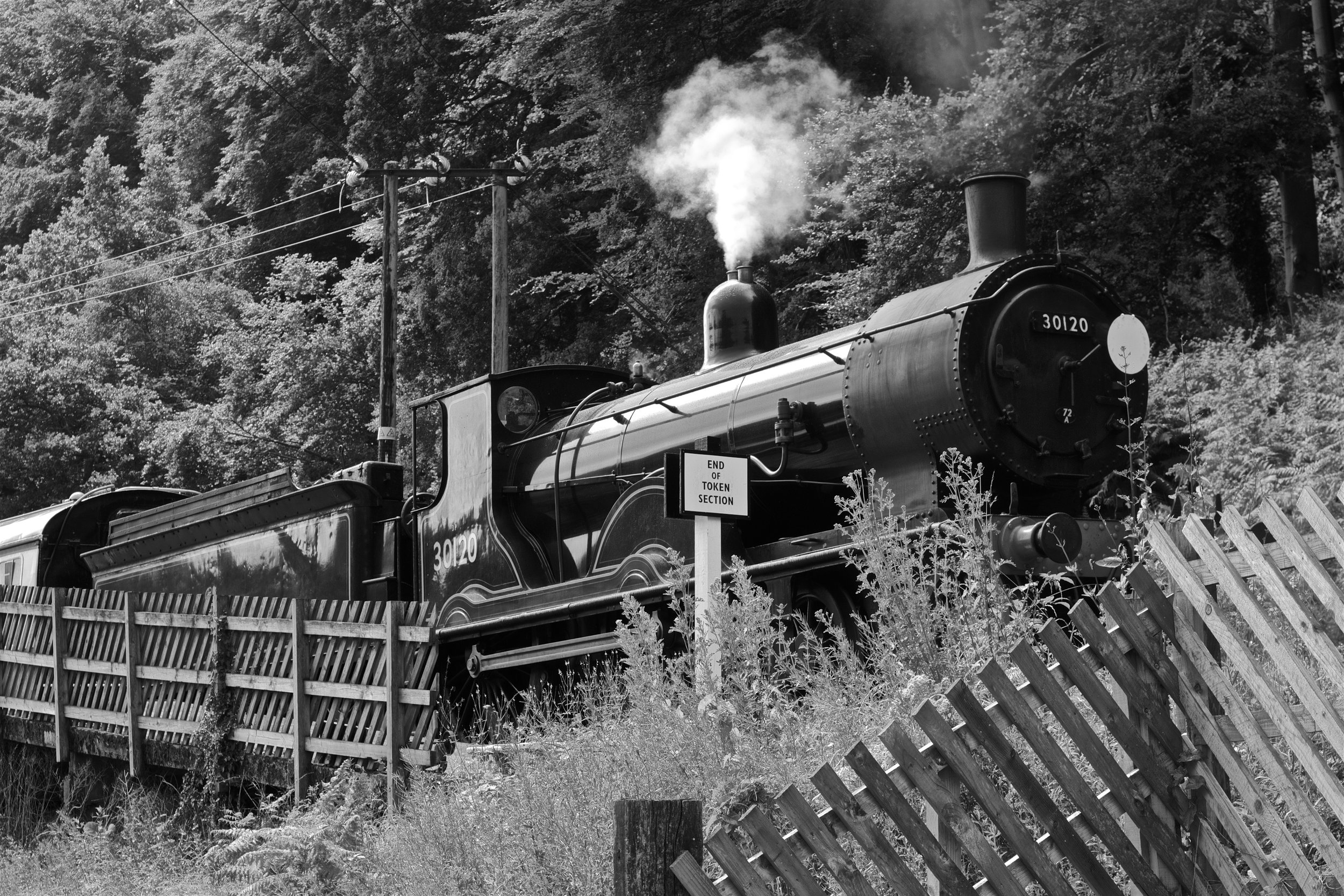 T9 No. 30120 at the Dean Forrest Railway Gala 2016 - photo by Gwion Rhys Davies