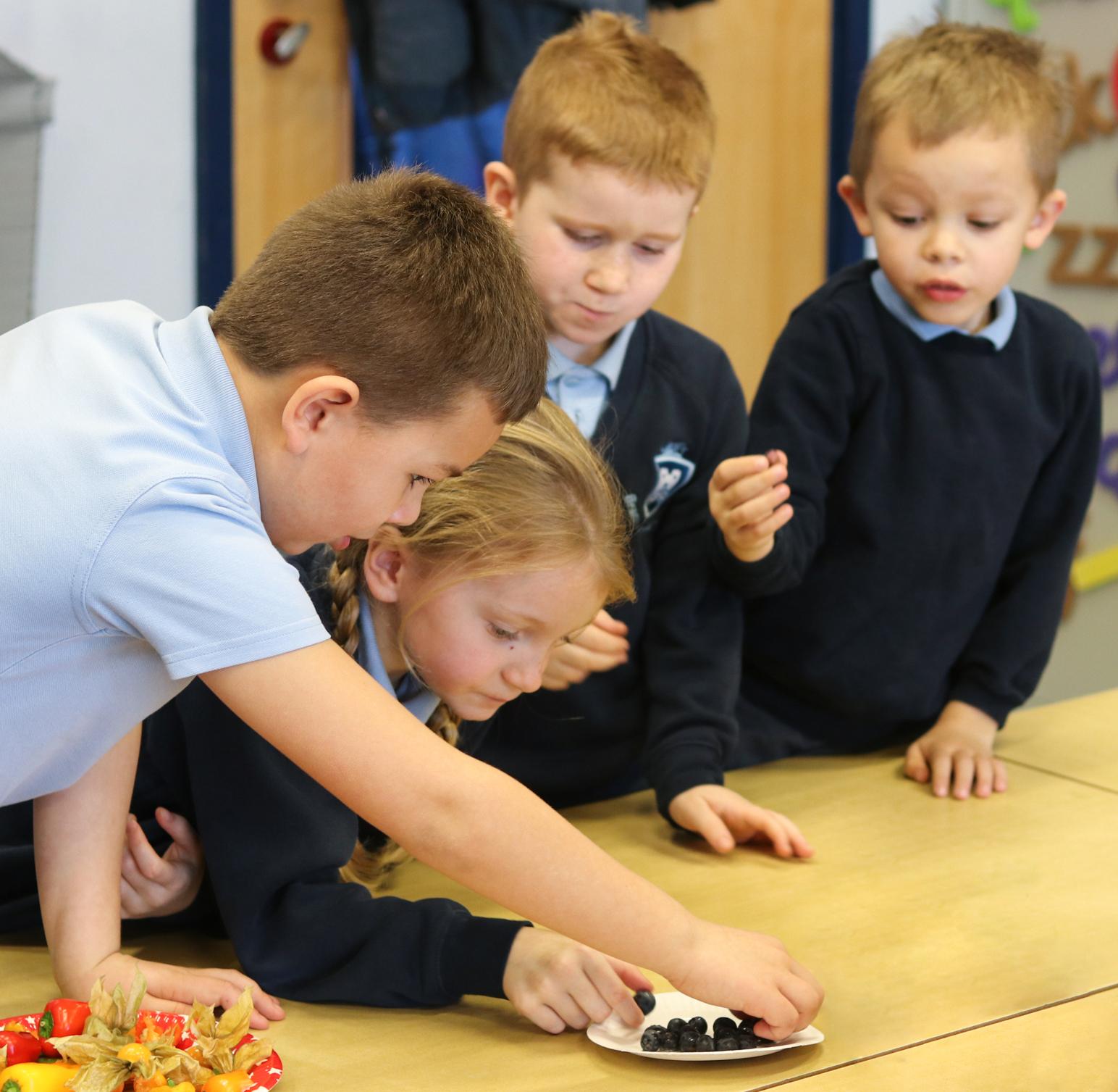 SFVS at Bramford Primary School 3.jpg
