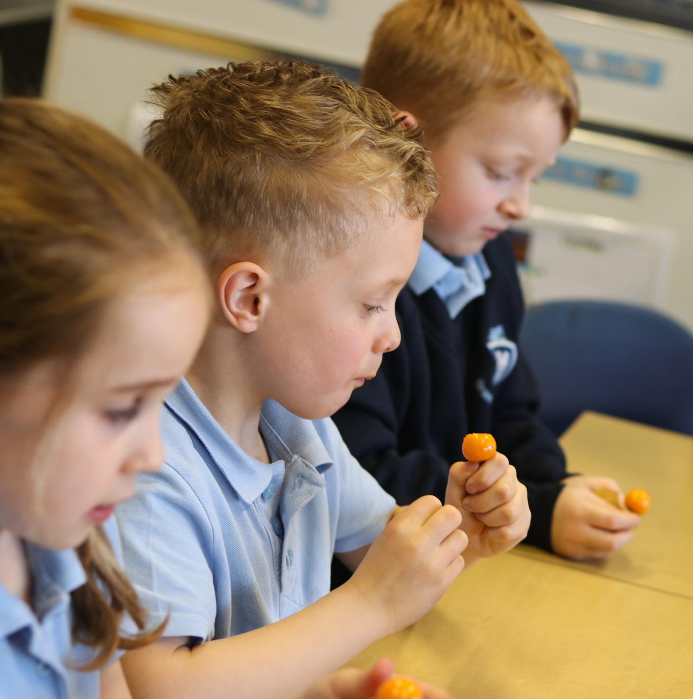 SFVS at Bramford Primary School 2.jpg