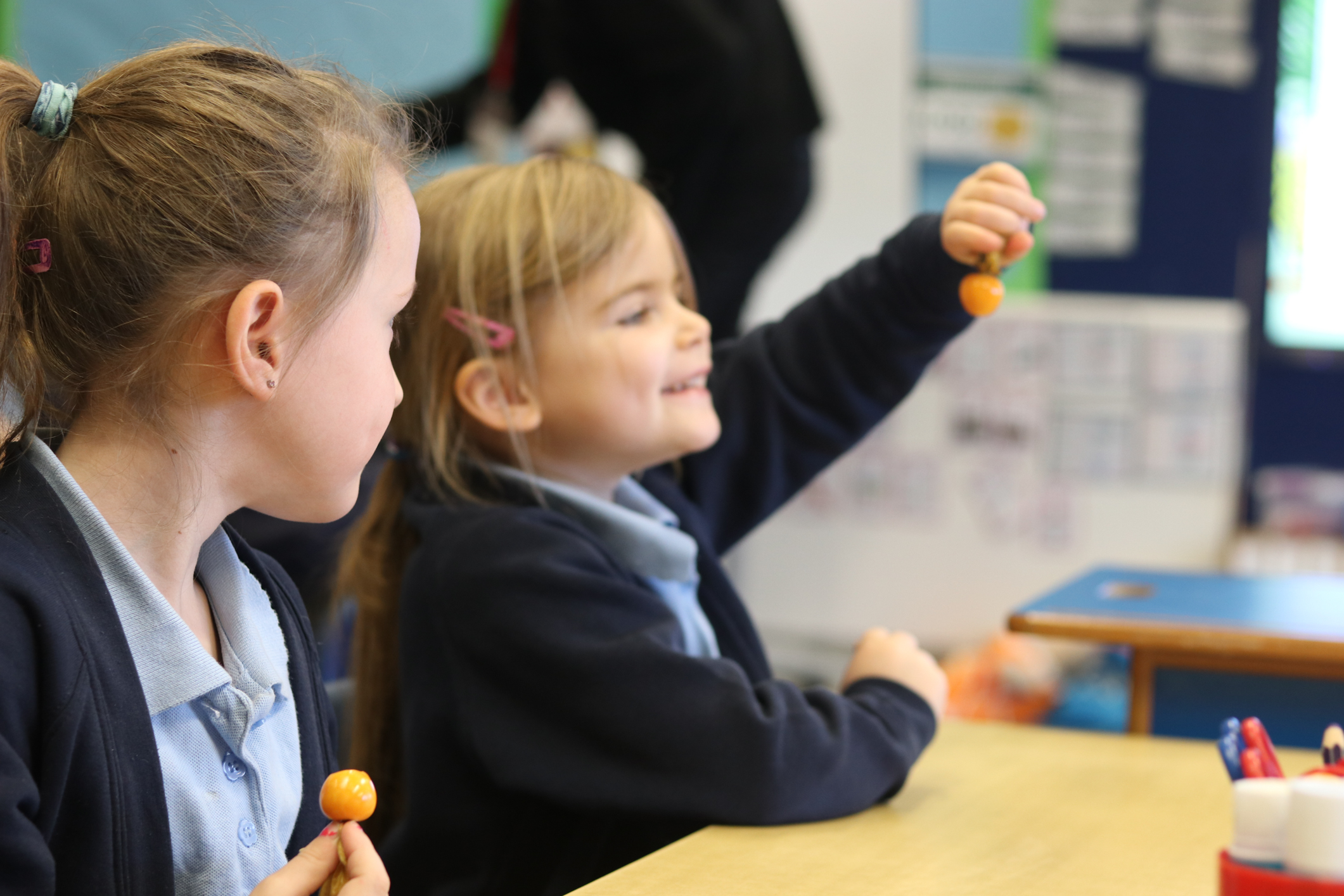 SFVS at Bramford Primary School 4.jpg