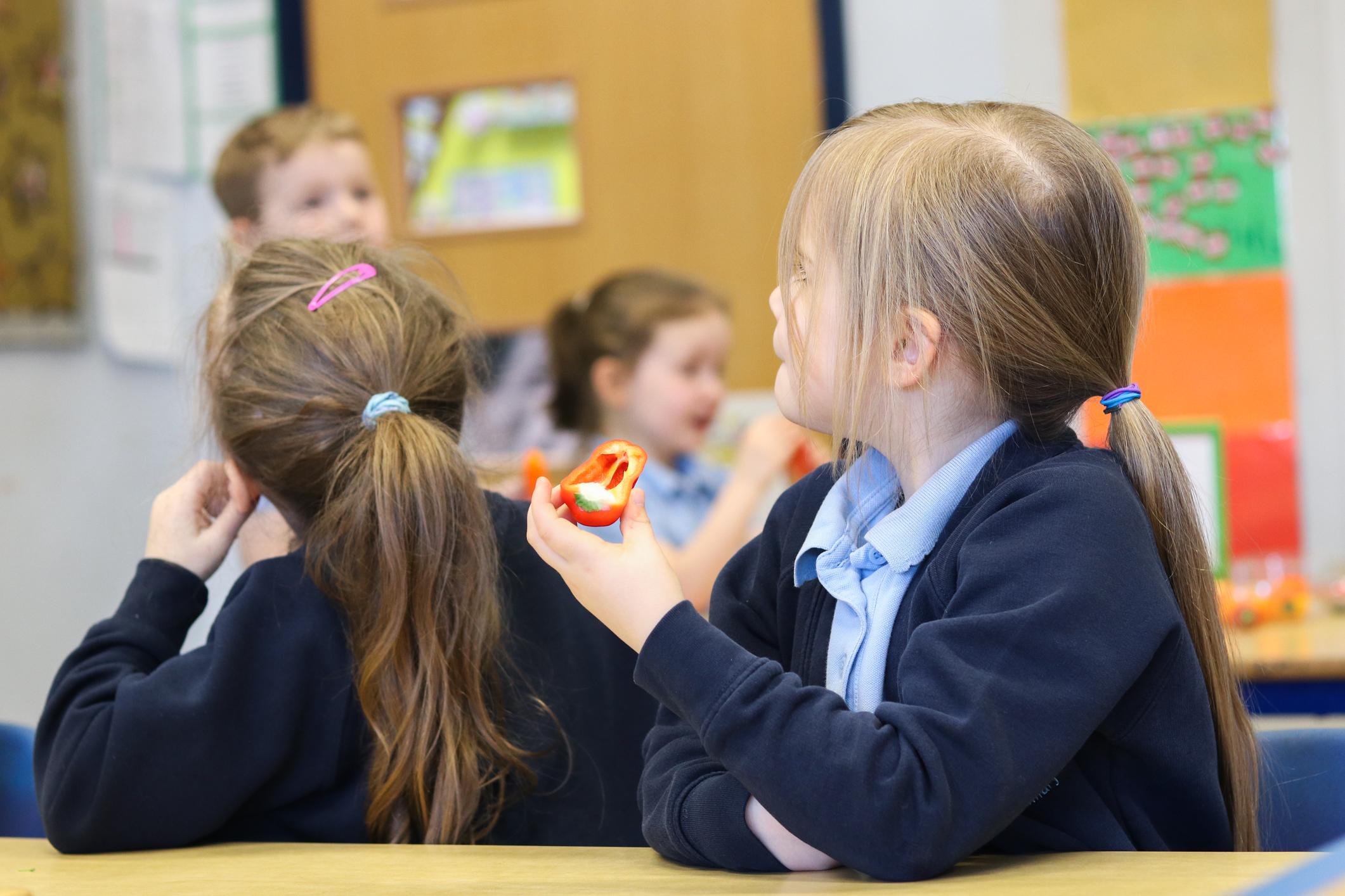 SFVS at Bramford Primary School 5.jpg