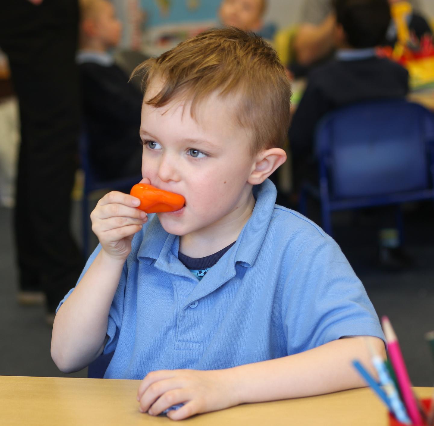 SFVS at Bramford Primary School 8.jpg
