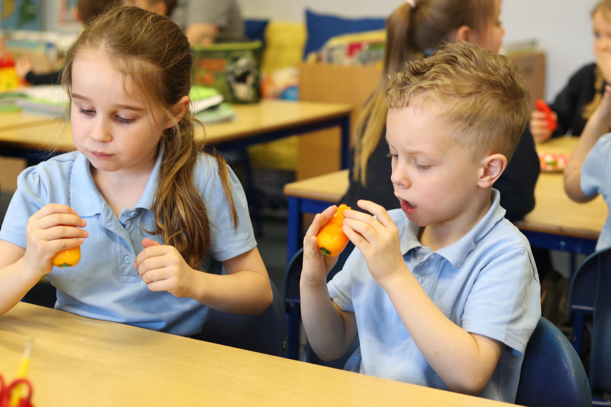 SFVS at Bramford Primary School 7.jpg