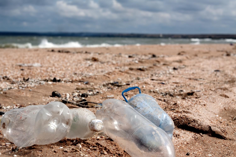 Plastic pollution awareness successes.jpg
