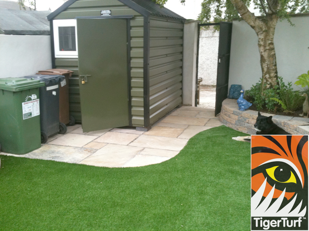 shed and patio with grass