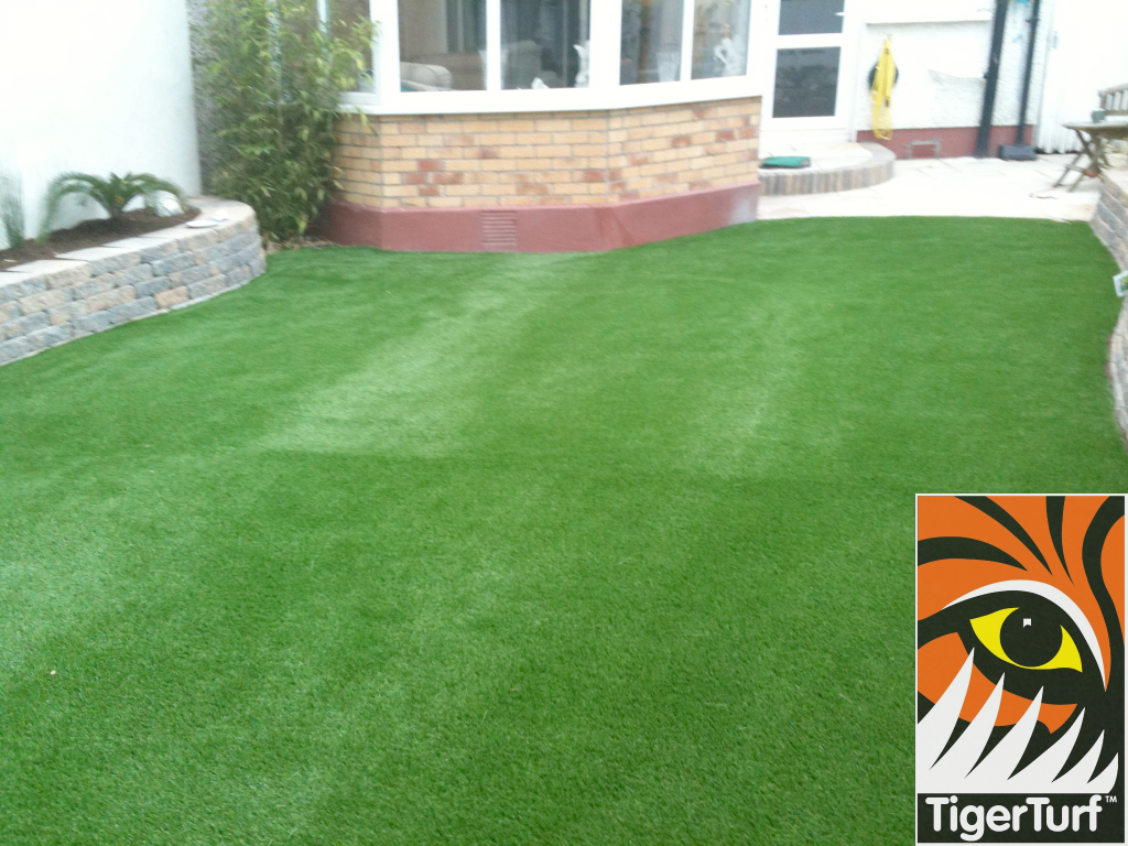new grass in back garden