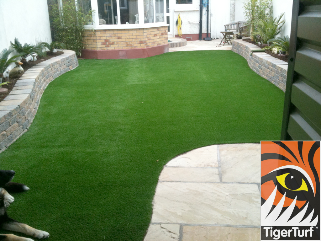 TigerTurf Vision Plus full Green