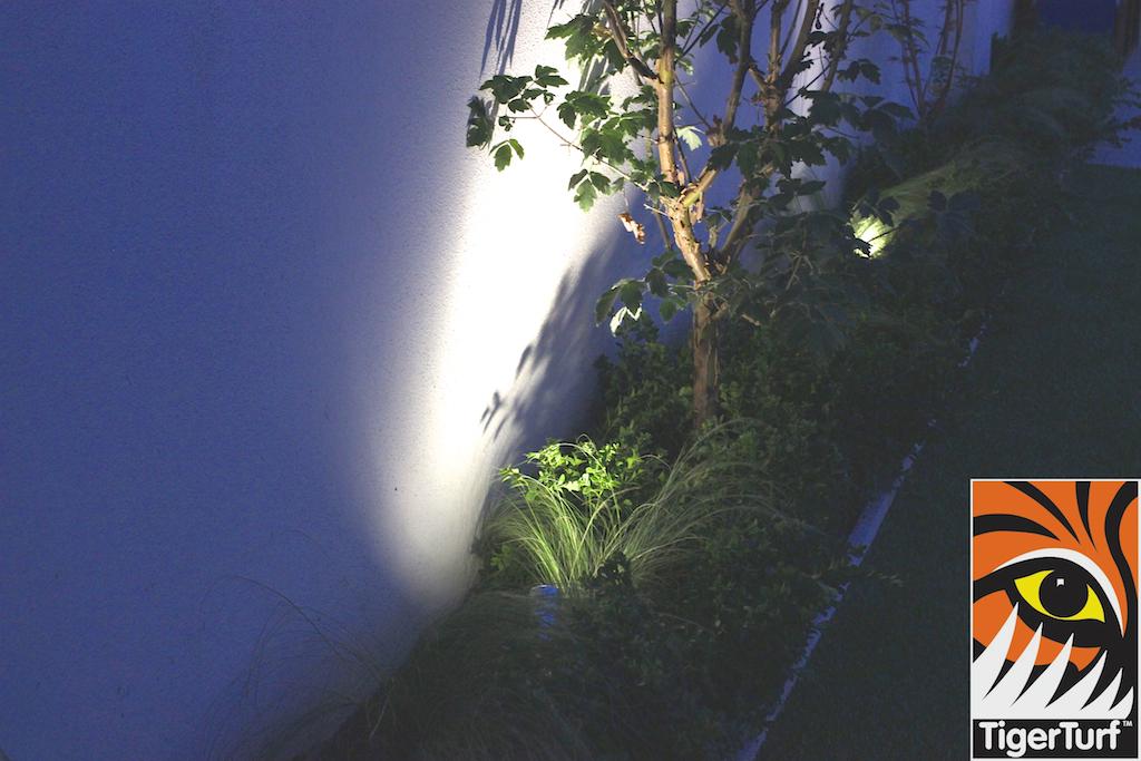 TigerTurf at night
