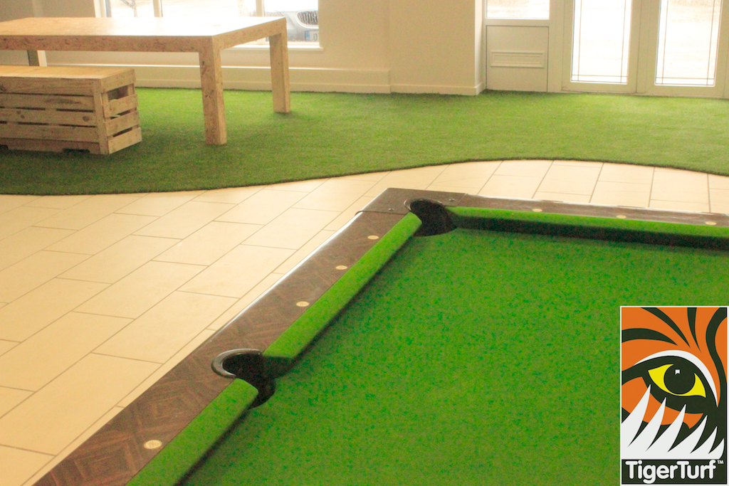 Snooker table and TigerTurf team area