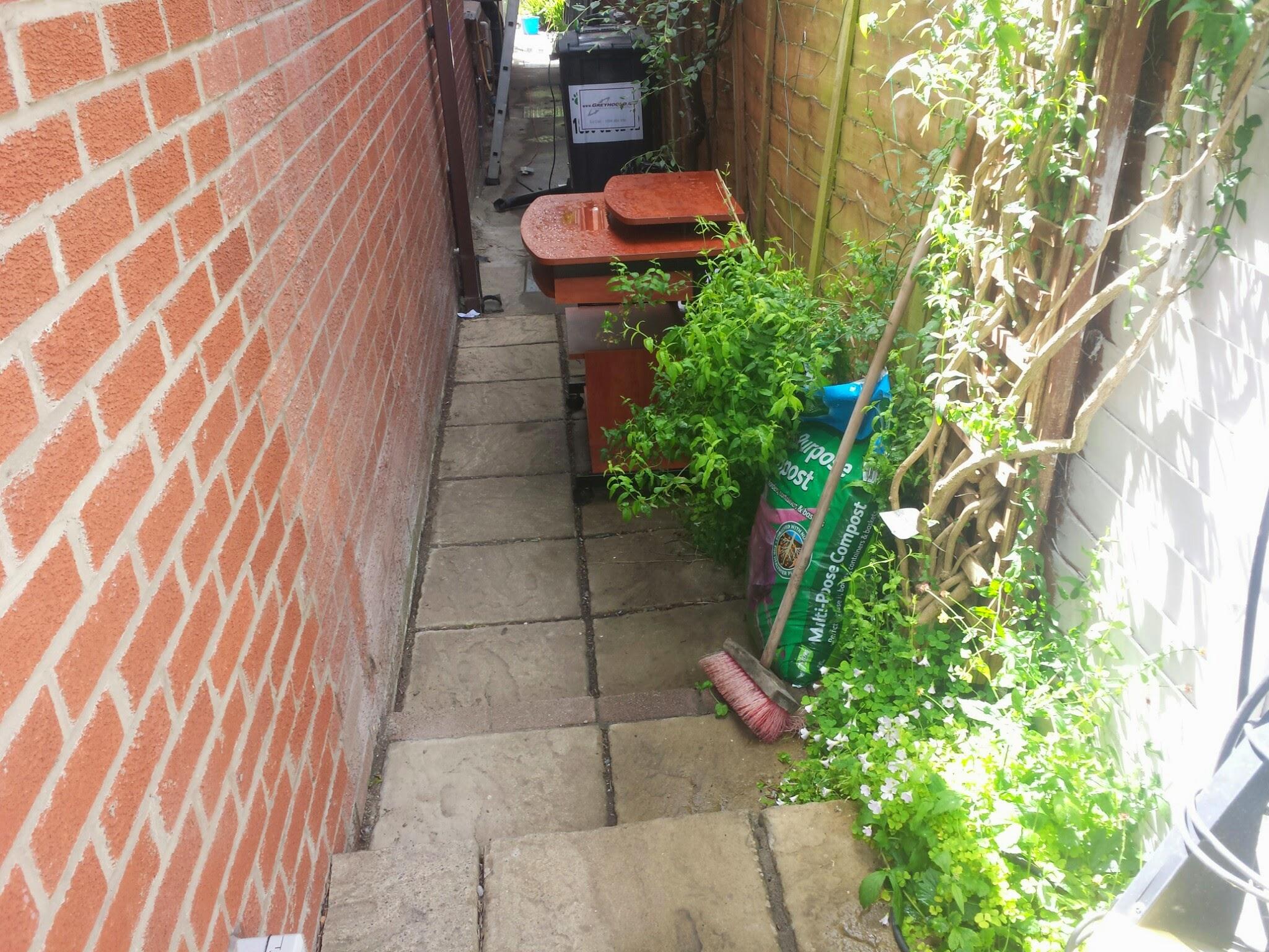 garden lane before landscaping