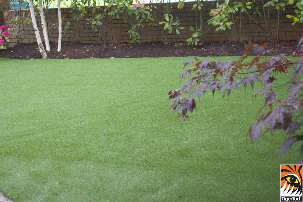 TigerTurf Finesse Deluxe front Garden