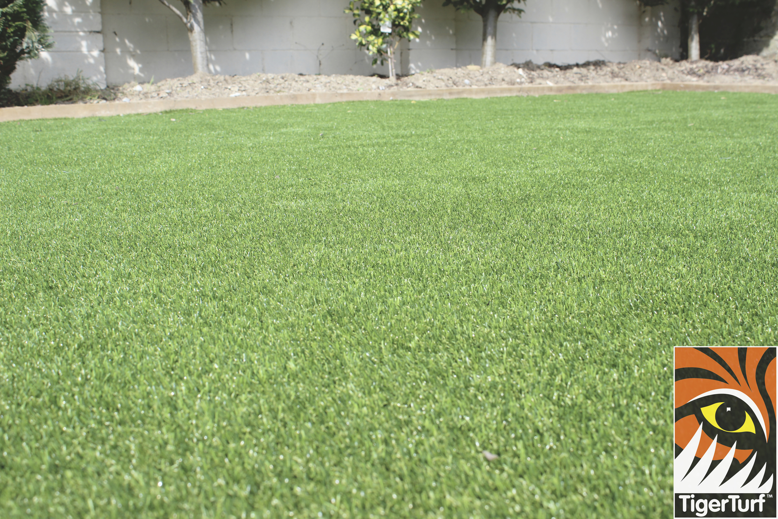 trees and TigerTurf