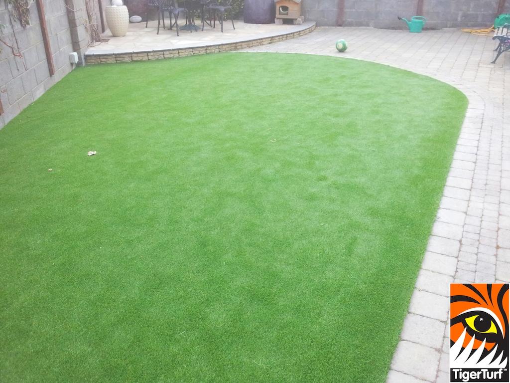 TigerTuf Vision Plus Lawn