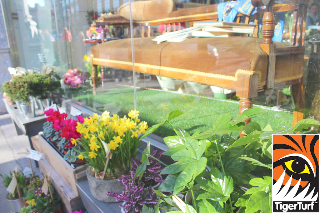 award winning shop window