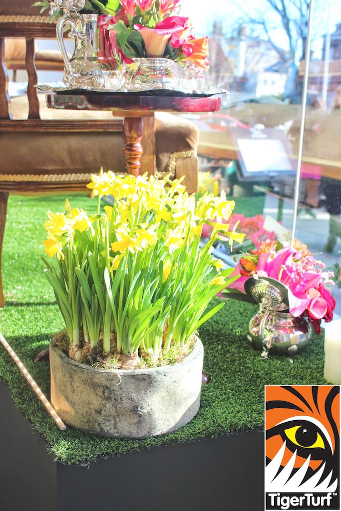 TigerTurf Display in florists window