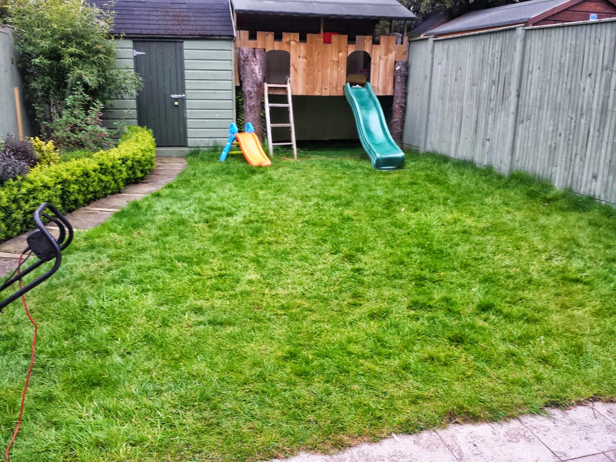overgrown lawn in back garden