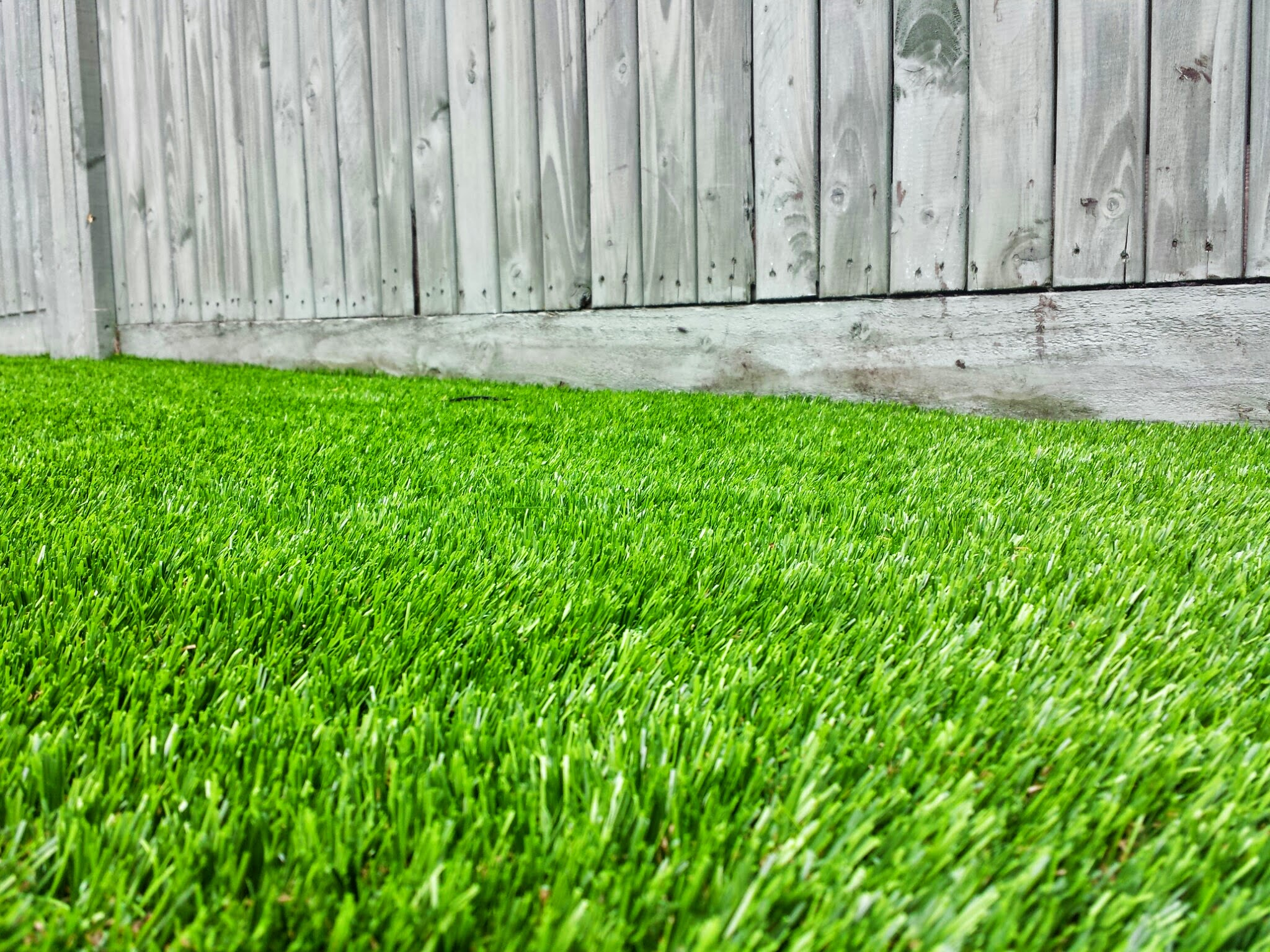 TigerTurf and fence